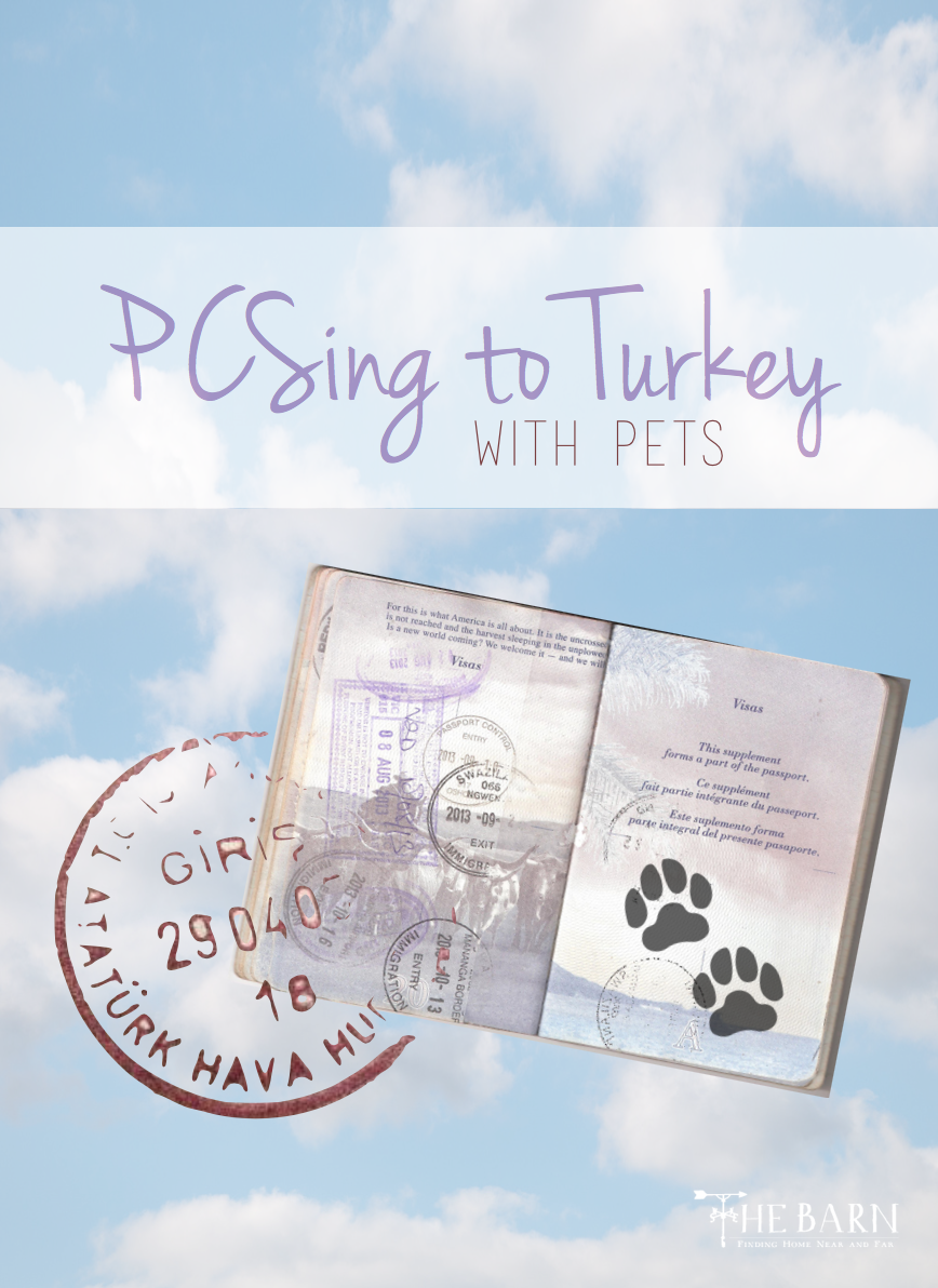 PCSing to Turkey With Pets